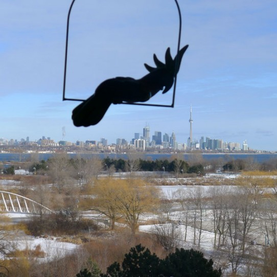 Giant parrot spotted menacing Toronto skyline.  Details at 11.