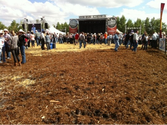 The 2011 Calgary Mudbowl (also known as: Stampede Roundup Party)