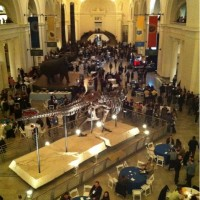 Drupal shindig at the Chicago Field Museum #drupalconchi